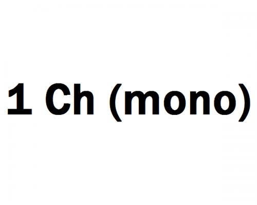1 Ch (mono) Erősítő